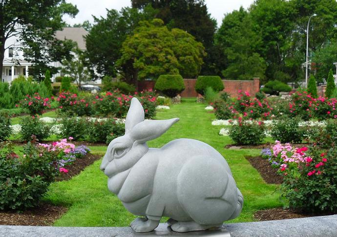 gar-bunny1-08-28-2012