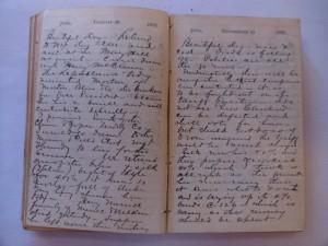 WCS Journal June 26-27, 1888