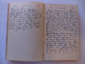 WCS Journal June 28-29, 1888