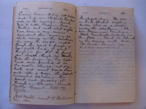 WCS Journal June 30 - July 07, 1888