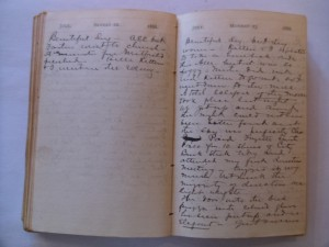 WCS Journal July 22-23, 1888