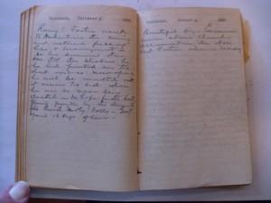 WCS Journal November 3-4, 1888