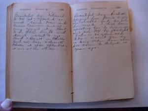 WCS Journal November 13-14, 1888