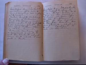 WCS Journal November 17-18, 1888