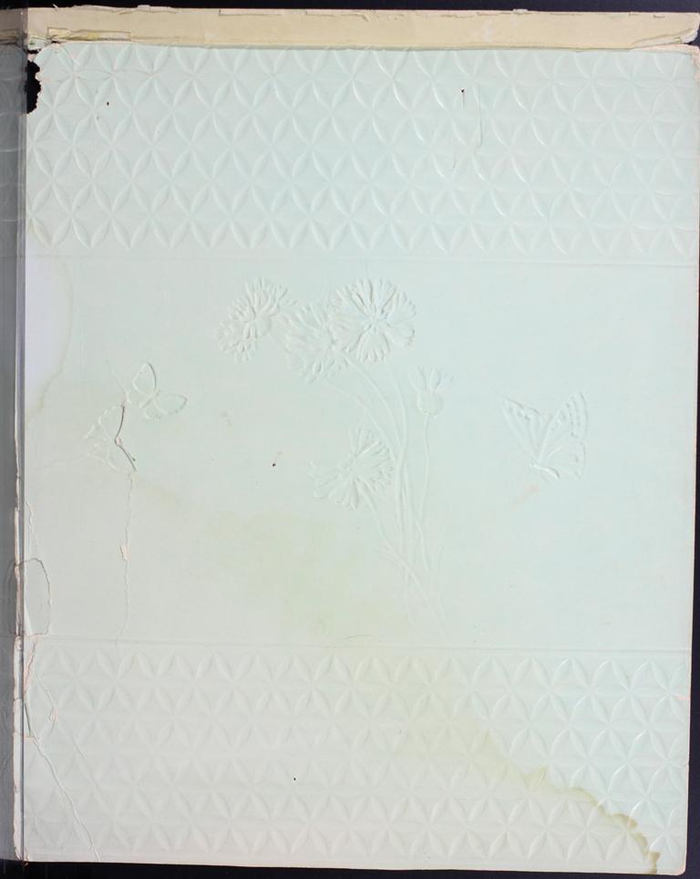 Belle Skinner 1887 Journal