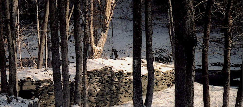 Stone wall in the forest