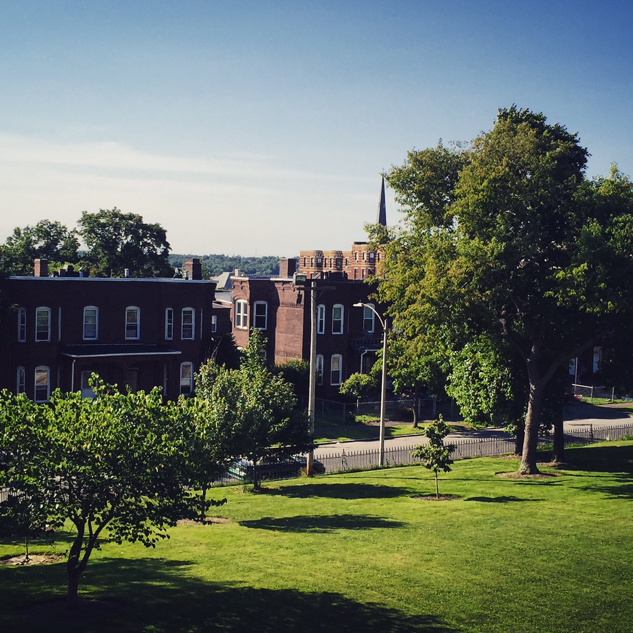 agreen lawn, leading up to green leaf trees, a black wrought iron fence, with red brick buildings in the background